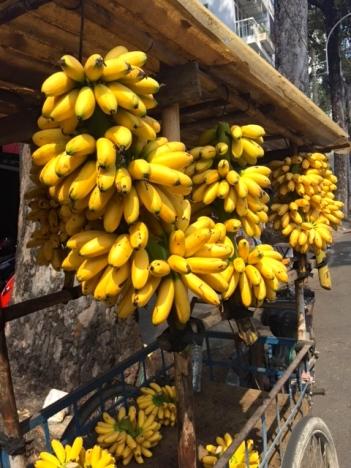 Beautiful banana's